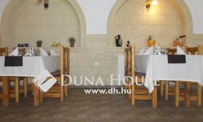 Eladó étterem, Pest megye, Dabas, Dabason az 5-ös mellett működő étterem ELADÓ