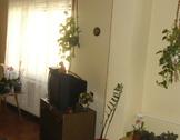 Eladó ház, Esztergom, Malonyai utca