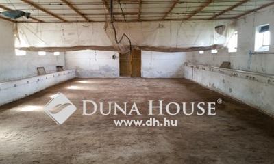 Eladó Ház, Bács-Kiskun megye, Kiskunfélegyháza, Tollfeldolgozó
