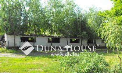 Eladó Ház, Bács-Kiskun megye, Kiskunfélegyháza, IV. Körzet tanya