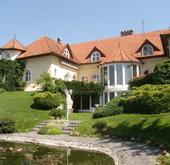 Eladó ház, Szentendre, Panorámás-nagy telek! Belső medence! Kerti tó!