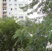 Eladó lakás, Kiskunfélegyháza, SPAR áruház környékén
