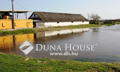 Eladó Ház, Pest megye, Törtel, Törtelen lótartásra alkalmas belterületi ingatlan
