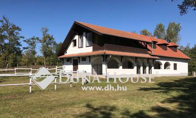 Eladó Ház, Pest megye, Kiskunlacháza, Kúria erdővel, legelővel, üdülőterületen