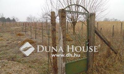 Eladó Telek, Bács-Kiskun megye, Izsák, Izsák belterületén építésre alkalmas telek eladó