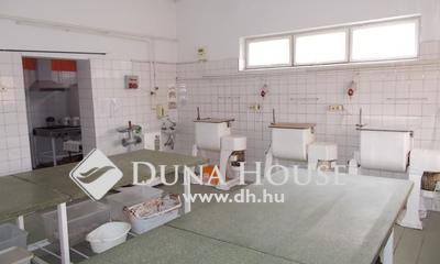 Eladó Ipari ingatlan, Bács-Kiskun megye, Lajosmizse