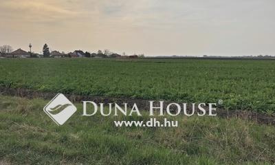 Eladó Telek, Pest megye, Nyáregyháza, Nyáregyházán 810nm-es építési telek eladó!