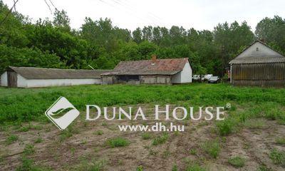 Eladó Ház, Bács-Kiskun megye, Lajosmizse, Gazdálkodásra alkalmas tanya!