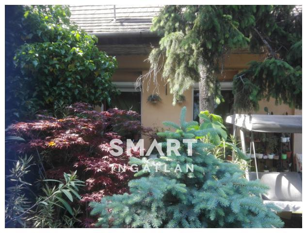 Eladó Ház, Budapest, 22 kerület, Budafok szívében két lakásos családi ház