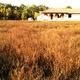 Eladó Ház, Hajdú-Bihar megye, Hosszúpályi, Hosszúpályi
