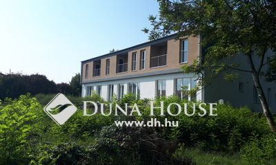 Dunaszeg Liget Projekt