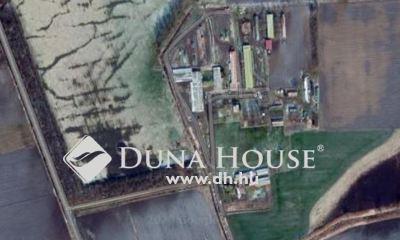 Eladó Ház, Hajdú-Bihar megye, Hosszúpályi, 1km-re a településhatártól