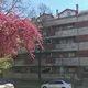 Eladó Lakás, Baranya megye, Pécs, Páfrány utca