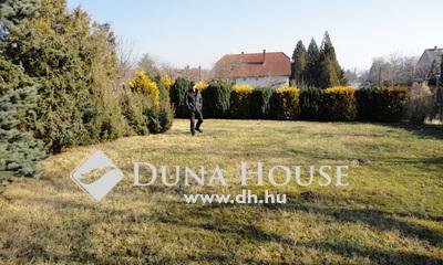Eladó Telek, Veszprém megye, Balatonkenese, Parkosított telek a központhoz közel